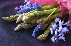 Elegant spring time asparagus
