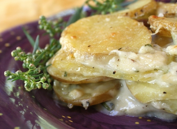 Blue Cheese Potato Gratin