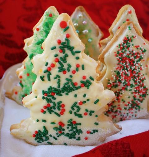 A sugar cookie forest
