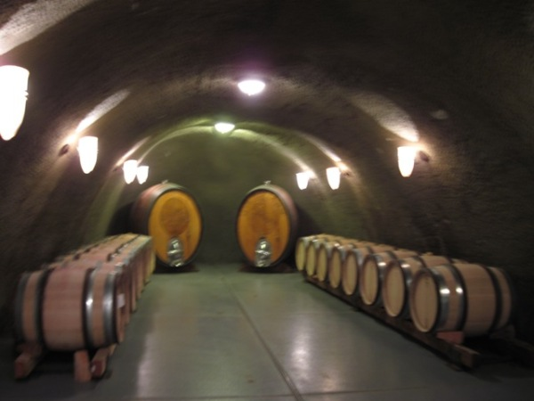 A wine cave at Archery Summit