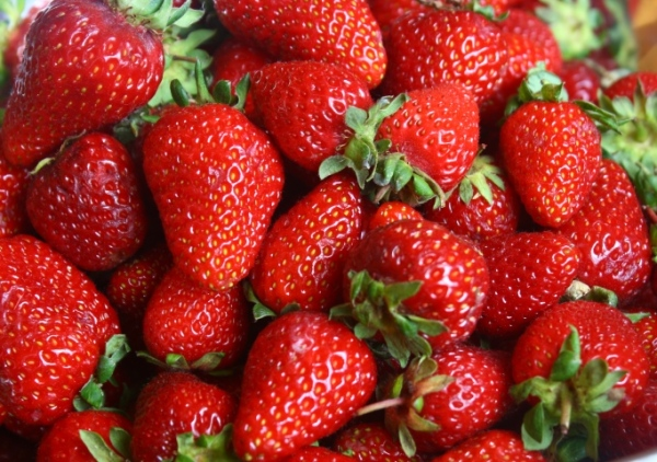 Oreganic strawberries are the only way to go!